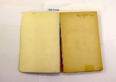Buch mit abgelöstem Einband und überklebtem Riss