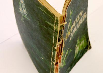 Buch mit beschädigtem Einband
